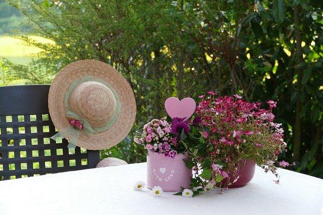 przesadzanie kwiatów
